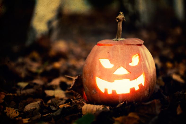 Make Halloween More Precious with Less Money